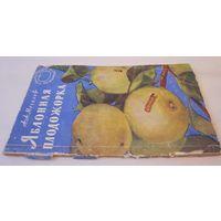 Яблонная плодожорка. 1957 г.