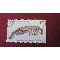 Болгария 1995г. Животные Антарктики