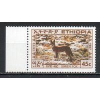 Стандартный выпуск Лиса Эфиопия 1987 год 1 марка