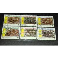 Болгария 1989 Фауна Змеи полная серия. Неаккуратно разрезанный лист 6 марок