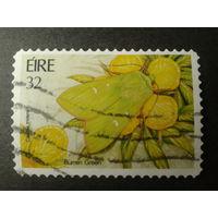 Ирландия 1994 бабочка на цветке