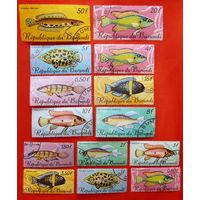 Бурунди. Рыбы. ( 14 марок ) 1967 года.