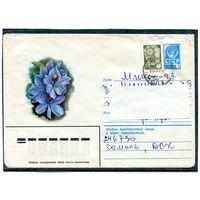 СССР. Цветок. Водяной гиацинт. Конверт прошедший почту. 1982