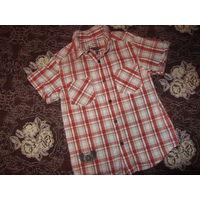 Рубашечка для модника