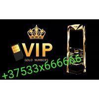 Эксклюзивный платиновый Номер МТС +37533x666666