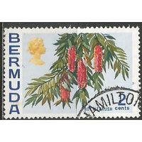Бермуды. Калистемон. Кустарник. 1970г. Mi#245.