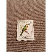Кения. Птицы. Merops oreobates