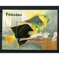 Бенин - 1996 - Рыбки - [Mi. bl. 23] - 1 блок. MNH.