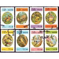 8 марок 1973 год Оман Дуфар Птицы