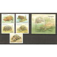 Азербайджан. Фауна Черепахи. 1995 г. Mi. 223-227, Бл. 13 MNH