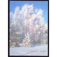 СССР 1989 ДМПК НОВЫЙ ГОД лес  снег лыжня