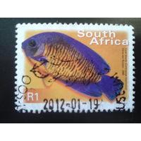 ЮАР 2000 рыба