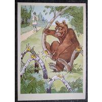 """Баженов А. Илюстр. к басне Крылова """"Трудолюбивый медведь"""" 1960-е. Чистая."""