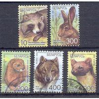Беларусь стандарт 2008 фауна