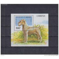 G164. Бенин - MNH - Природа - Собаки
