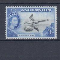[607] Британские колонии о.Вознесения 1956. Фауна.Птица.
