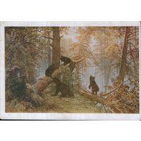 """Открытка 1930г. по картине И.И. Шишкина """"Утро в сосновом лесу"""""""