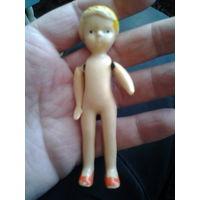 Куколка небольшая. АСКИМ.