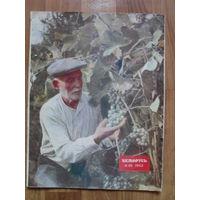 "Журнал ""БЕЛАРУСЬ"".1953г.Номер 10."
