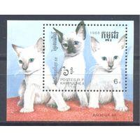 Кампучия 1988 Фауна. Кошки, блок