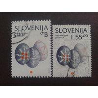 Словения 1996-2002 стандарт пасхальные яйца