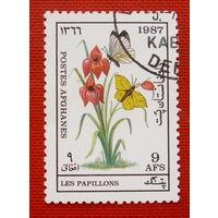 Афганистан. Бабочки. ( 1 марка ) 1987 года.