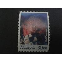 Малайзия 1997 Кораллы