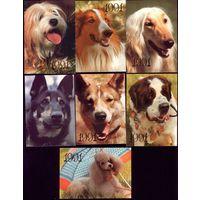 14 календариков Собаки