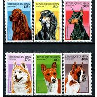 Бенин - 1997г. - Собаки - полная серия, MNH [Mi936-941] - 6 марок
