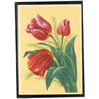 Тюльпаны. В.Зеленов