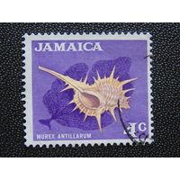 Ямайка 1970 г. Раковина.
