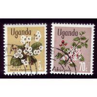 2 марки 1969 год Уганда Флора 105,113