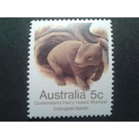 Австралия 1984 вомбат