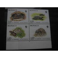 Марки - Монако фауна черепахи квартблок