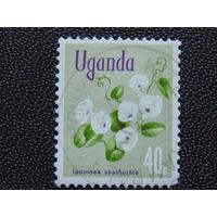 Уганда. Флора.