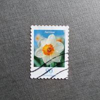 Марка Германия 2006 год Цветы