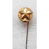 Значок. Звезда. ...что то очень патриотичное #0083