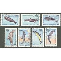 Куба 1984. Киты и дельфины. Животные. Фауна. Полная серия, гаш.