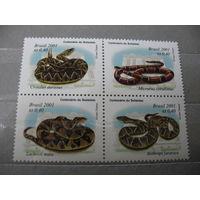 Бразилия.  Ядовитые  змеи.  2001г.