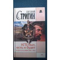 Евгений Стригин  КГБ был, есть и будет. От КГБ СССР до МБ РФ (1991-1993)