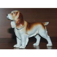 Фарфоровая статуэтка собаки.Германия