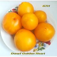 Семена томата Dwarf Golden Heart