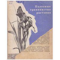 Полезные травянистые растения