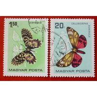 Венгрия. Бабочки. ( 2 марки ) 1966 года.