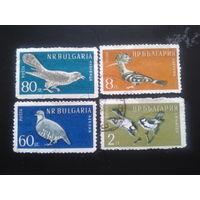 Болгария 1959 птицы  Mi-5,5 евро гаш. полная серия 6 марок