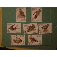 Мадагаскар 1991 фауна птицы 7 марок