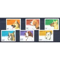 Бенин 1995 Собаки, 6 марок