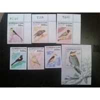 Азербайджан 1996 Певчие птицы полная серия