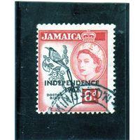 Ямайка.Ми-188. Вымпелохвостый колибри. Птица-доктор. Надпечатка: независимость 1962.