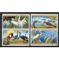 Птицы Сенегал 1974 год 4 марки
